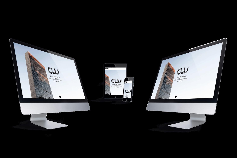 CLU - Unternehmensberatung Referenz by Web N App Programming